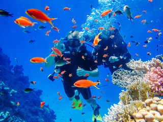 Beach and Diving Vacations in Egypt